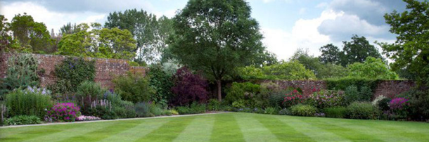 Instant Lawn Turfing